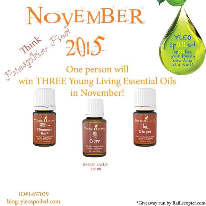 Giveaway November 2015