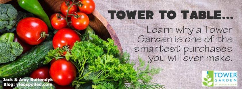 Tower Garden.jpg