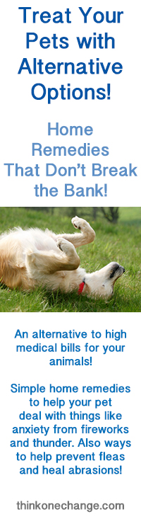 Alternative Treatment for Pets