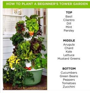 Tower Garden Growth