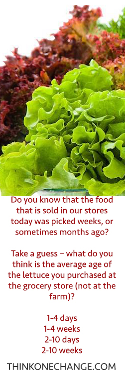 When was your food picked?