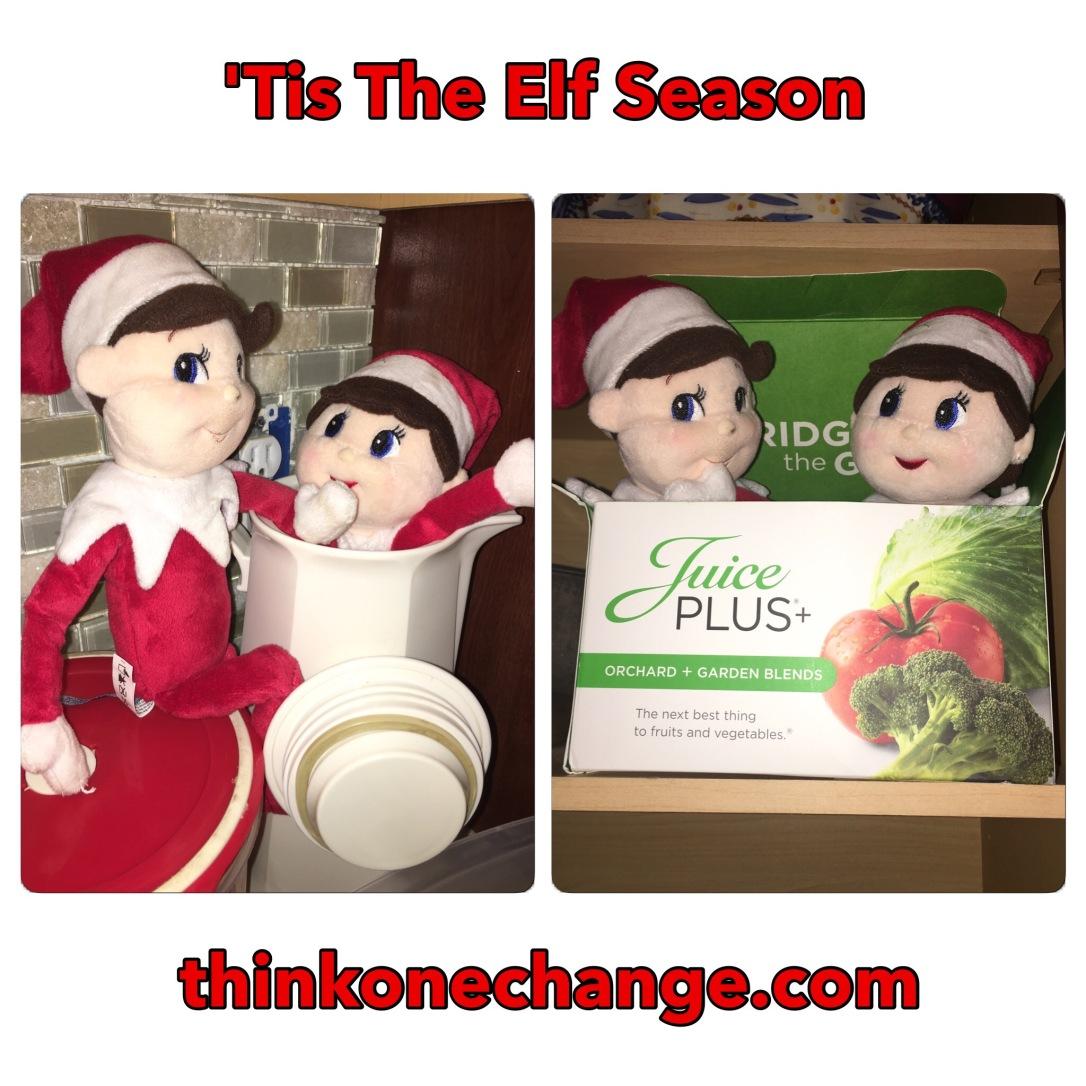 'Tis The Elf Season