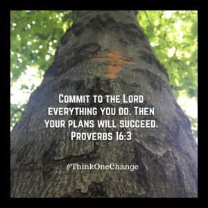 Commit to the Lord everything you do. Proverbs 16:3  ThinkOneChange.com